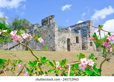Caribbean Sugar Mill Ruin