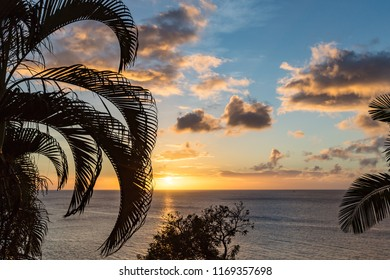 Caribbean sunset with palm trees