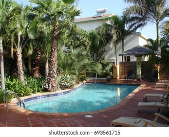 Caribbean swimming pool with palm trees and terracotta terrace with sun beds