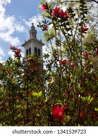 Carillon Tower Surrounded by Flowering Red Azaleas