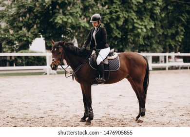 Caring equestrian. Caring professional equestrian calming his favorite horse before important horserace