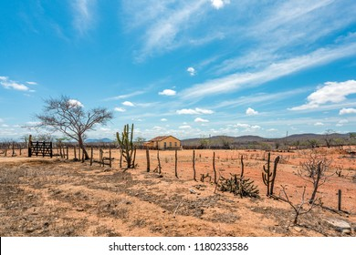 Cariri, Paraíba, Brazil - February, 2018: Landscape of a Simple life background with a beautiful yellow house in a dry land with Caatinga Biome at Northeast of Brazil