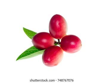Carissa carandas fruit on white background.
