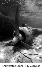 'Carlos Lehder Plane'.  The underwater wreckage of the drug plane of Carlos Lehder which crashed after taking off overloaded with drugs from Norman's Cay, Bahamas.  Photo taken in 2003.