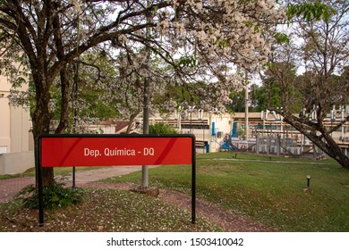 São Carlos, SP, Brazil - September 11,2019: Department of Chemistry at the Federal University of São Carlos (UFSCAR), on a rare occasion when the White Ipe flourishes (Tabebuia roseo-alba).