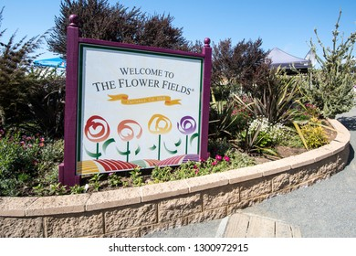 Carlsbad, California - May 5 2018: Sign welcoming visitors to the Carlsbad Flower Fields, a popular tourist destination with Ranunculus flowers