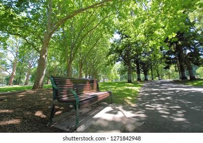 Carlton garden Melbourne Australia