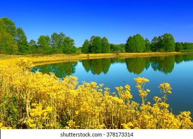 Carlyle Lake at Eldon Hazlet State Park Illinois