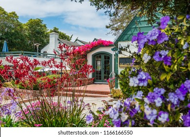 CARMEL-BY-THE-SEA, USA - May 13 2018: Colorful tropical flowers in a garden at Carmel-By-The-Sea, California, with a view through shrubs to the front door of the house covered with pink bougainvillea