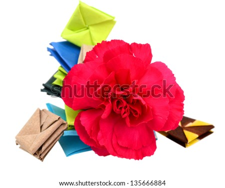 Carnation Flower Origami Shapes Stock Photo Edit Now 135666884