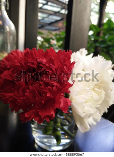 Carnations on the table
