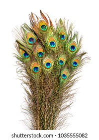 Carnival peacock feathers.