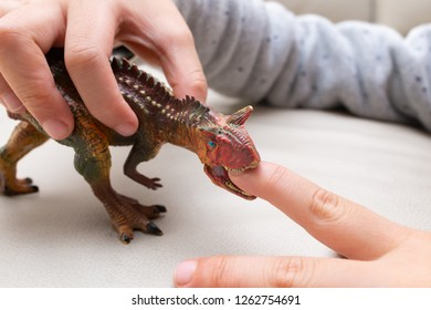 Carnotaurus playing a Carcharodontosaurus toy and putting his finger inside the mouth