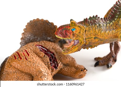 Carnotaurus with a triceratops body nearby on white background close up