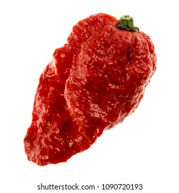 The Carolina Reaper is a medium sized chili pepper of the species Capsicum chinense, red and gnarled with a small pointed tail. It is an extremely hot chili, originated from South Carolina, USA.