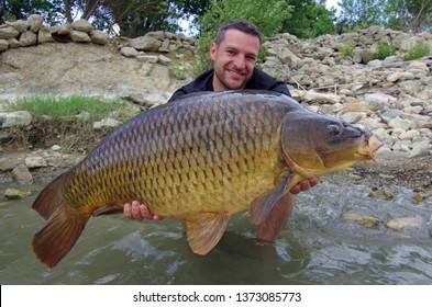 Carp fishing. Catch of fish. Lucky fisherman holding a giant common carp. Freshwater fishing