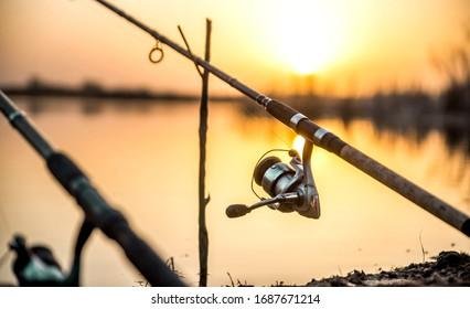 carp fishing rod isolated on lake. feeder fishing reel close up.