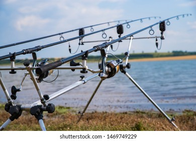 Carp fishing. Rods on a rod pod with the swingers attached ready to catch some fish.