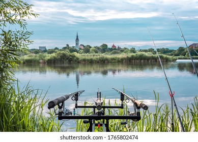 Carp fishing rods on rod pod isolated. fishing lake with rods isolated.