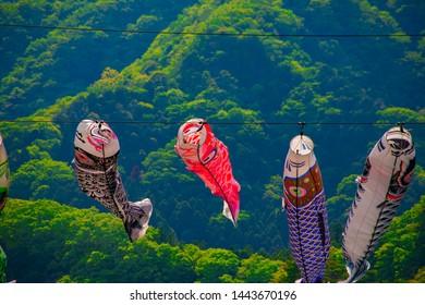 "Carp streamers behind the green forest daytime sunny. Hitachiota district Ibaraki Japan - 05.10.2019 Translation on Carp shaped streamer text ""Festival""."
