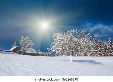 Carpathian mountain village covered by fresh snow. Ukraine, Europe