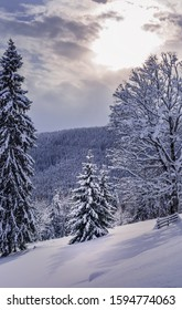 Carpathian mountains covered by mixed forest under heavy snow. Untouched snow at foreground. Sun is shining through gap in clouds. Vertical greeting card background for winter holidays. Copy space.