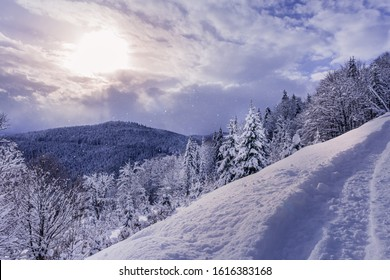 Carpathian mountains and forest under heavy snow. Footpath in the snow at foreground. Sun is shining through gap in clouds and it is snowing at the same time. Winter seasonal greeting card background.