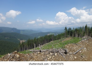 Carpathian Mountains. Mountain Kobila. Transcarpathia