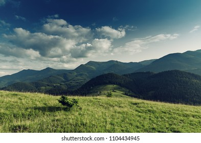 Carpathian mountains summer landscape with blue sky and clouds, natural outdoor background