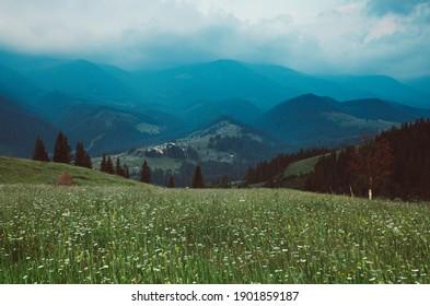 Carpathian mountains summer landscape, vintage hipster natural background