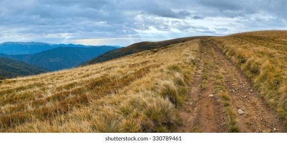 Carpathian Mountains (Ukraine) landscape with country road.