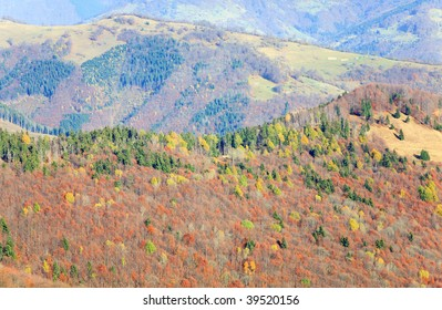 Carpathian Mountains (Ukraine) misty autumn day mountainside view with cattle-breeding farm