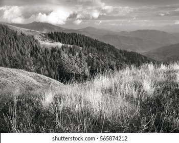 In the Carpathians,  black and white autumn cold often turns into snow, and then again come warm sunny days. Against the background of high mountain ranges and beautiful beech forests scenic