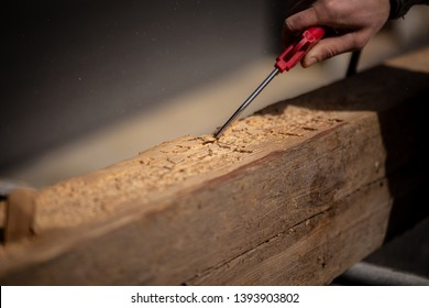 Carpenter Blows Sawdust Out Of Woodworm Marks On Reclaimed Oak Wood Beam