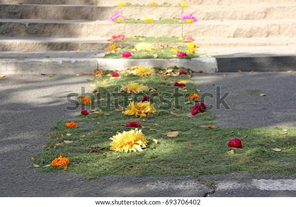 carpet-flowers-holiday-600w-693706402.jp