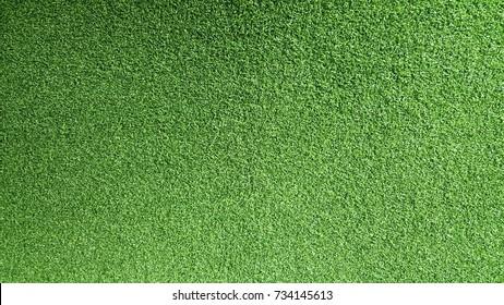 Carpet grass texture