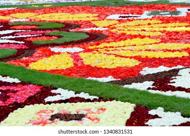 A carpet made of plenty of flowers of begonia and dahlia.