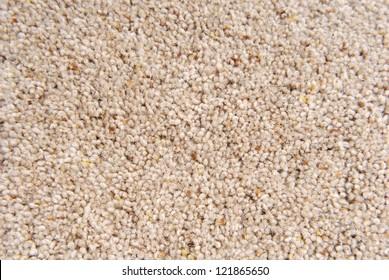 carpet texture macro