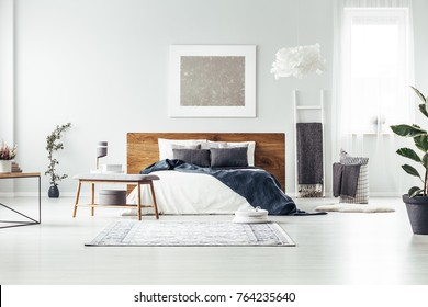 Carpet and wooden bench near king size bed with navy blue blanket in spacious bedroom with silver painting