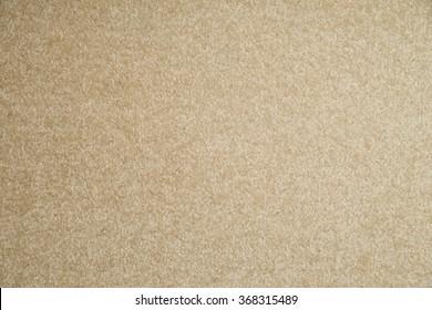 carpeted floor background / Floor