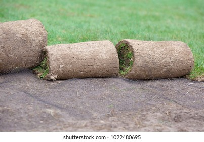 Carpets of turf or grass rolls with erosion control mesh during high quality lawn produce