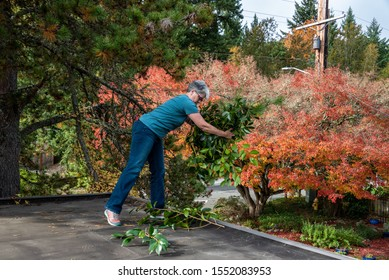Carport rooftop view, fall color, woman picking up pruned branches for disposal