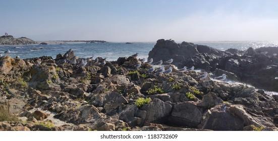 Carreco beach coastline, Portugal.