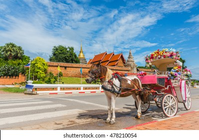 The carriage in front of wat phra tad lampang luang  designed for private passenger.