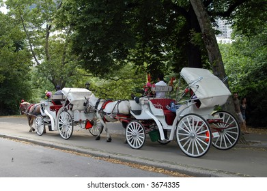 Carriage Ride, central park
