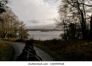 Carriage tour (jaunting car tour) along Lough Leane Lake of Killarney National Park in Ireland