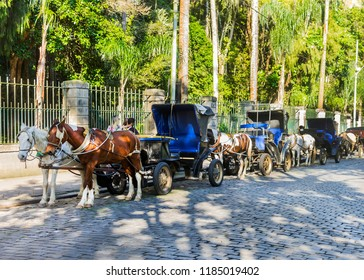 Carriages with horses for sightseeing - Victories