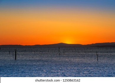 Carril clam aquaculture pond posts in Vilagarcia de Arousa at red dusk with Barbanza mountain range in the background