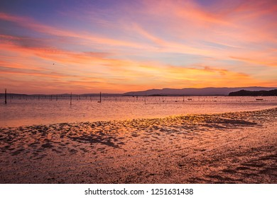 Carril clam aquaculture ponds on Compostela beach, Vilagarcia de Arousa at colorful dusk