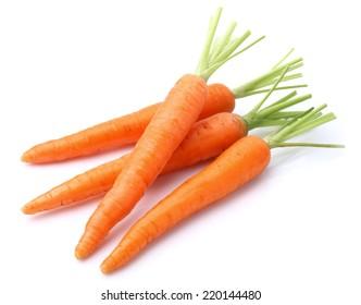 Carrot in closeup